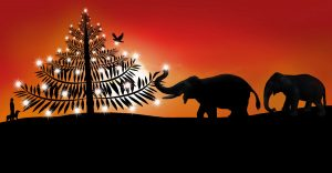 Christmas Banquet @ Hotel Satish Executive   Pune   Maharashtra   India